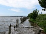 Weston Marsh Lock